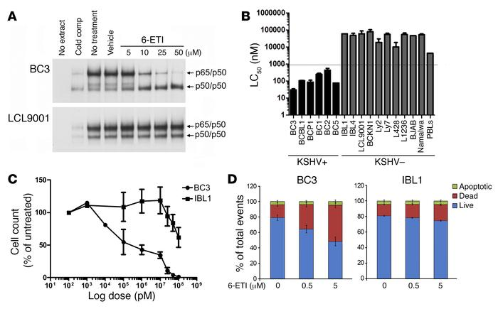 Selection of 6-ETI. (A) BC3 (KSHV+) and LCL9001 (KSHV–) cells were treat...