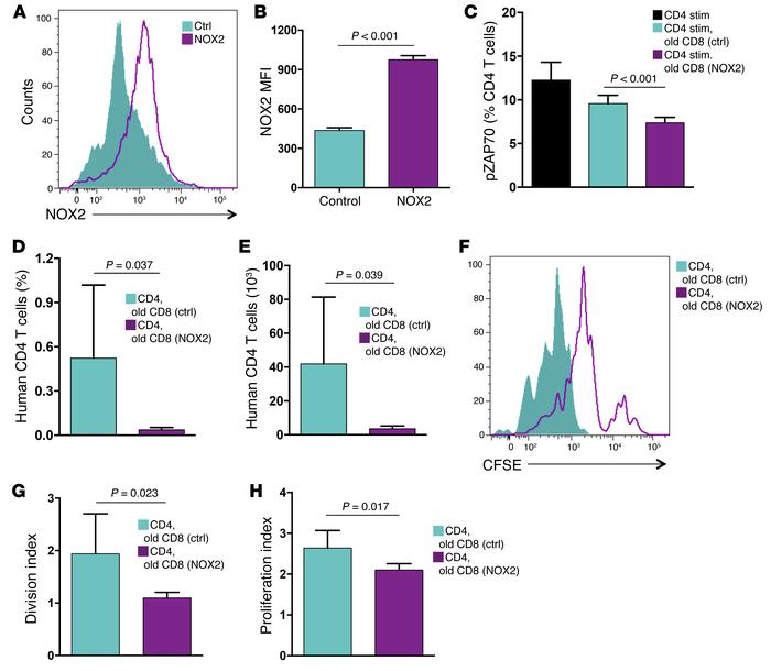 Overexpression of NOX2 rescues the suppressive activity of old CD8 Tregs...