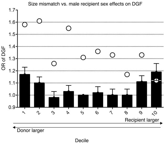 Size discrepancy in human renal transplantation. Deceased donor renal tr...