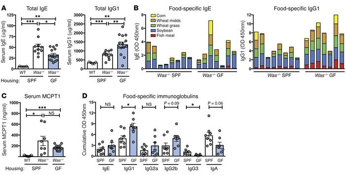 Commensals are dispensable for spontaneous sensitization to food in Was–...