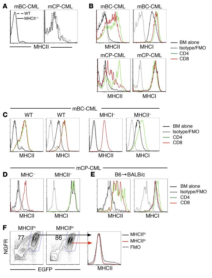 Expression of MHC molecules on mCP-CML and mBC-CML LSCs increases in the...