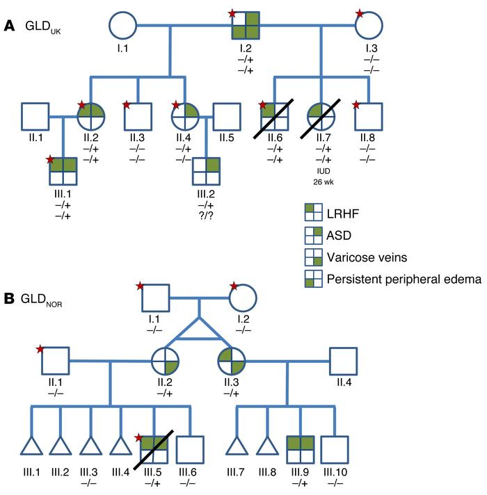 Mutations in EPHB4 cause LRHF. (A) Pedigree of GLDUK family. (B) Pedigre...