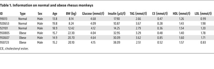 Information on normal and obese rhesus monkeys
