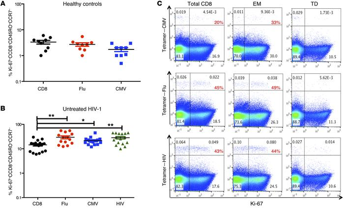 Increased cycling in CD8+ memory T cells that bind CMV, influenza, and H...