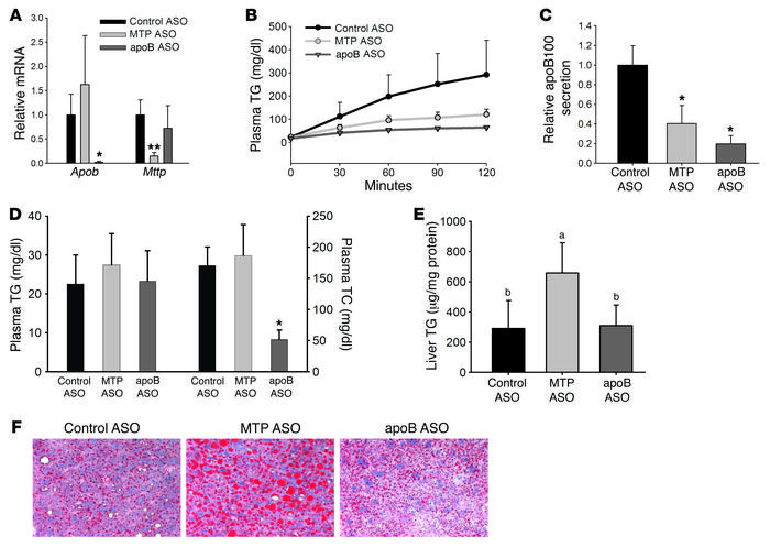 MTP ASO and apoB ASO reduce secretion of TG and newly synthesized apoB s...