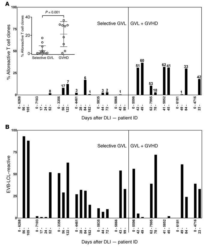Frequencies of alloreactive T cells. HLA-DR+ CD8 T cells were single-cel...