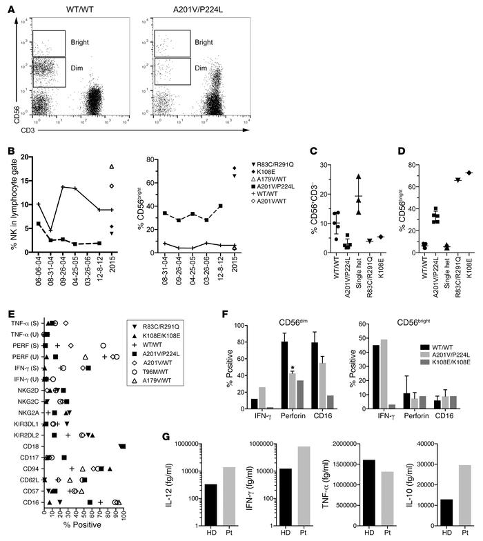 Stable impairment in NK cell terminal differentiation in patients with b...