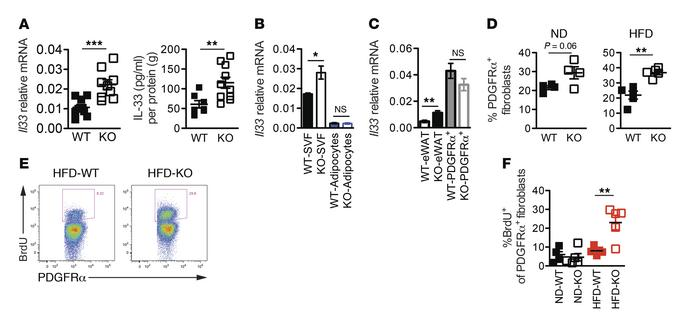 PDGFRα+ fibroblast expansion accounts for higher expression of IL-33 in ...