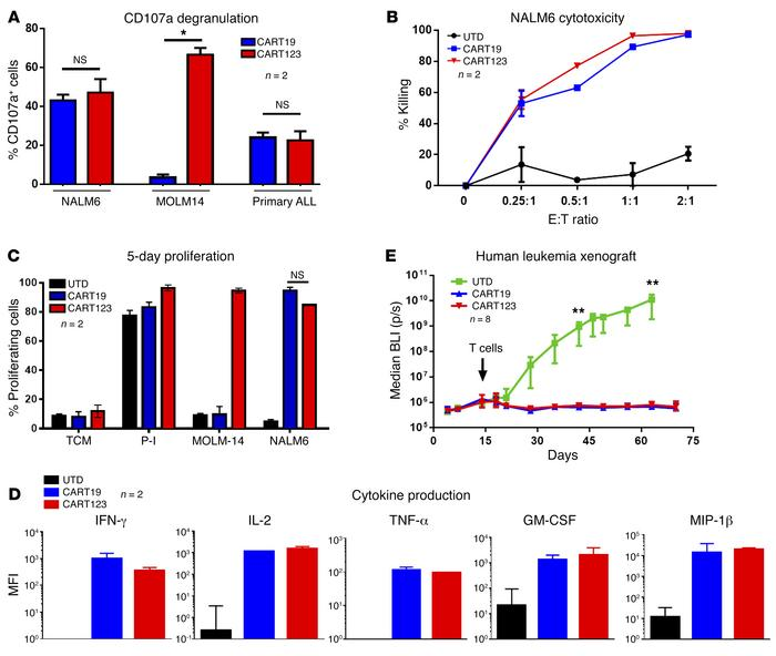 CART123 exerts potent antileukemia activity in vitro and in vivo. (A) CA...