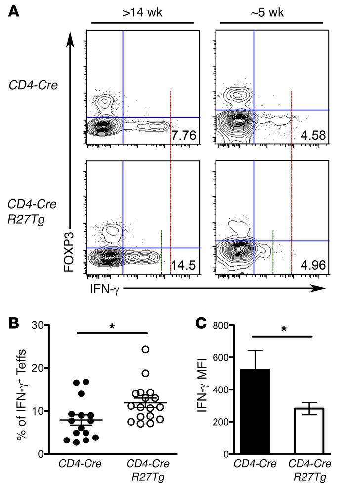 Diminished IFN-γ production by miR-27–overexpressing T cells in CD4-Cre ...