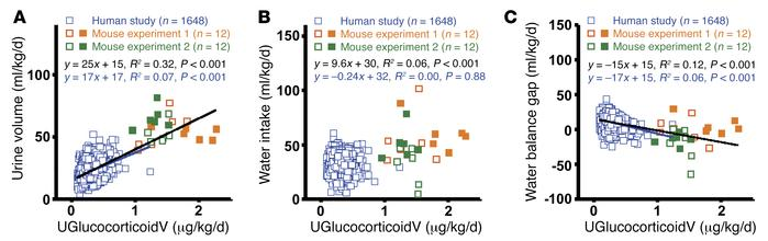 Glucocorticoid levels and water balance in mice and humans. (A) Relation...