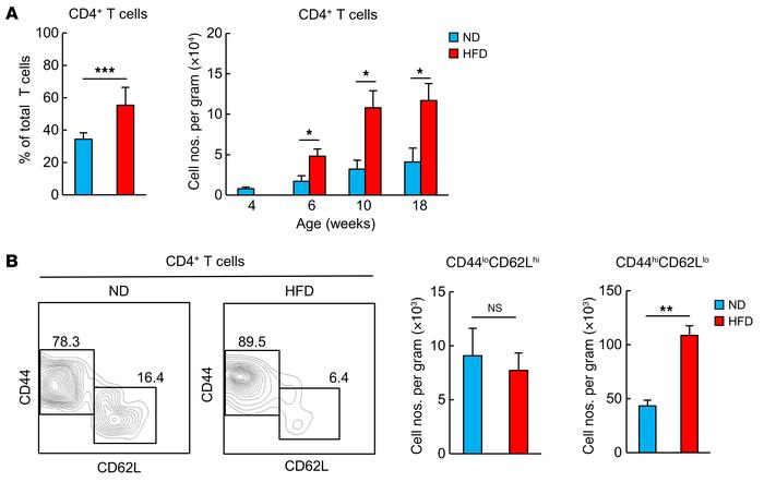 An HFD induces the accumulation of CD44hiCD4+ T cells in VAT. WT mice we...