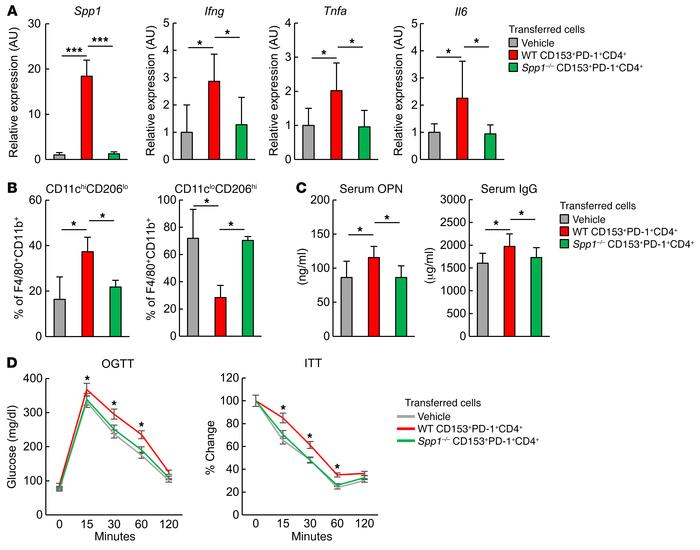 CD153+PD-1+CD4+ T cells cause VAT inflammation and insulin resistance by...