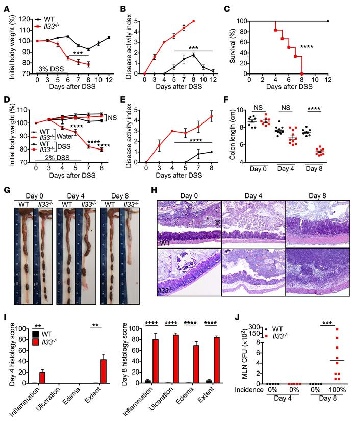 IL-33 decreases susceptibility to DSS-induced colitis. (A) Body weight c...