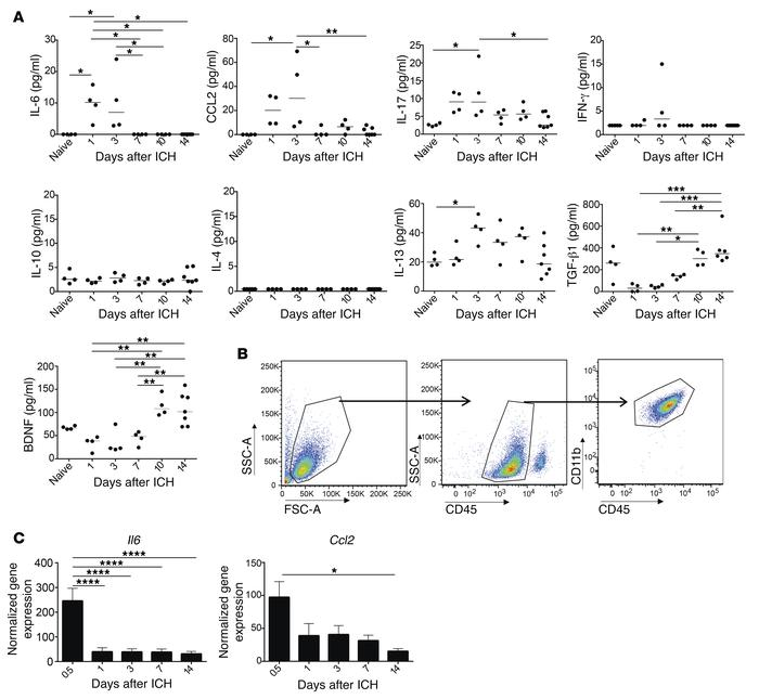 Microglia downregulate proinflammatory genes by 7 days after ICH. (A) Mu...