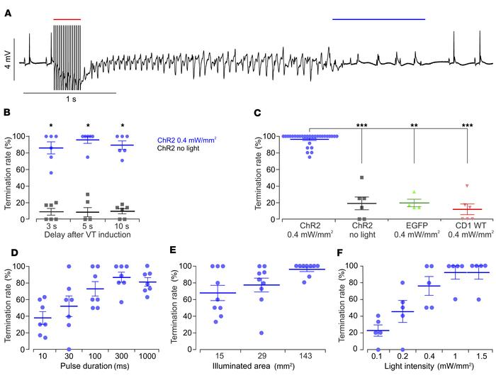 Optogenetic defibrillation in transgenic hearts. (A) Representative ECG ...