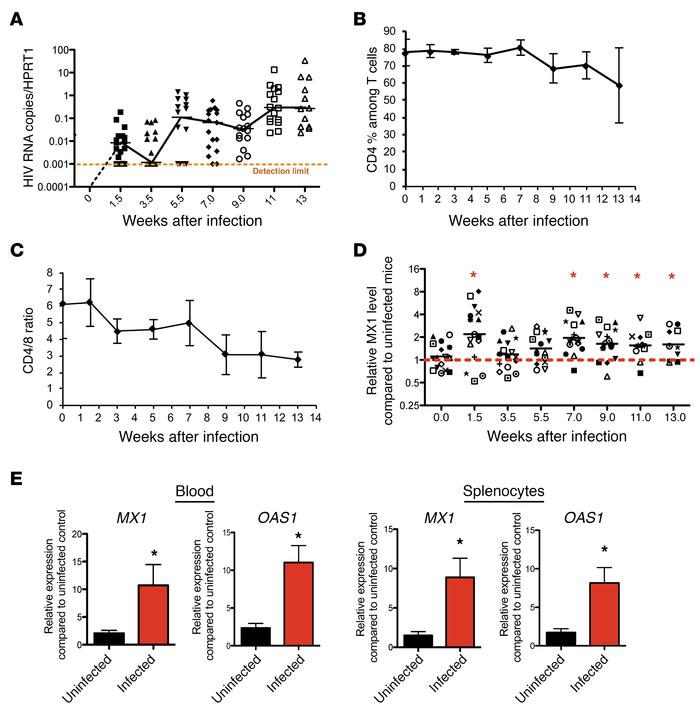 IFN-I signaling is chronically elevated during HIV-1 infection. (A) Chan...