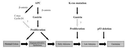 A role for gastrin in the molecular pathogenesis of colorectal cancer.