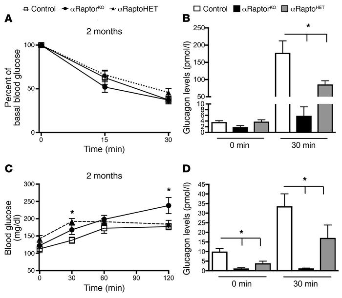 αRaptorHET mice exhibit decreased glucagon responses to hypoglycemia and...