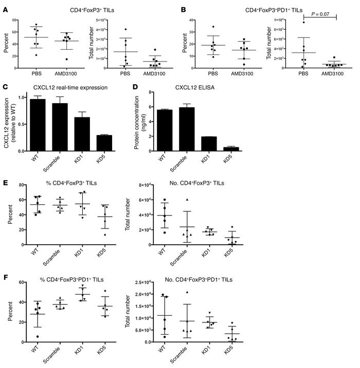 Role of CXCL12/CXCR4 pathway in Treg infiltration into claudin-low tumor...