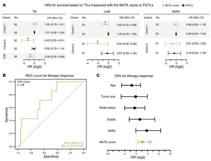 The MeTIL score improves the prediction of survival and response to anth...