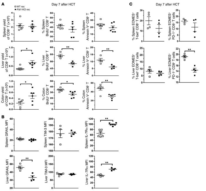 Depletion of donor CD4+ T cells allows host-tissue PD-L1 to tolerize CD8...