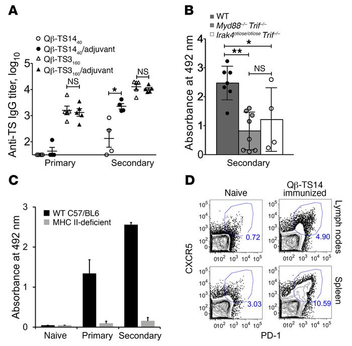 Innate immune signaling and cognate CD4 T cells are essential for anti-g...