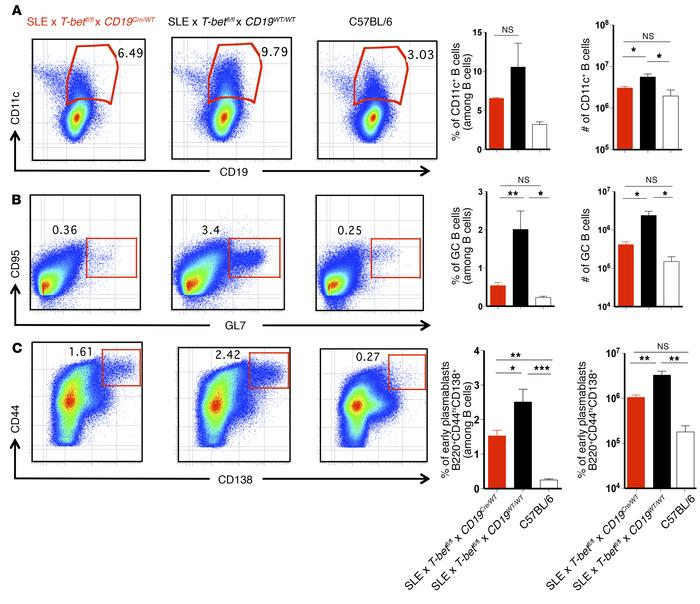 Reduced appearance of CD11c+ ABCs, GC B cells, and early plasmablasts in...