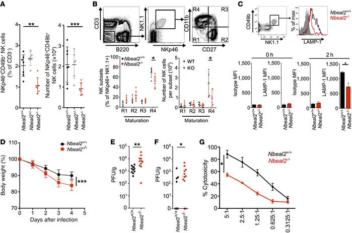 Nbeal2–/– mice have dysfunctional NK cells in vitro and an impaired res...