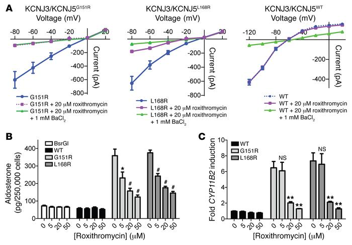 Roxithromycin inhibits KCNJ3/KCNJ5MUT-induced Na+ current and KCNJ5MUT-i...
