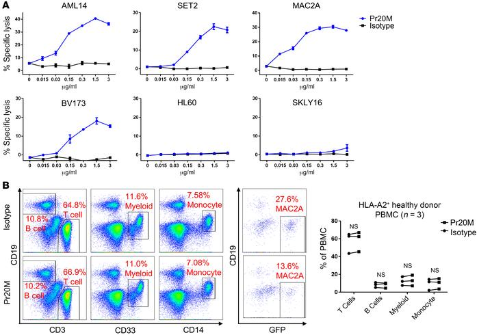 Pr20M mediates Ab-dependent cellular cytotoxicity in vitro on PRAME+HLA-...