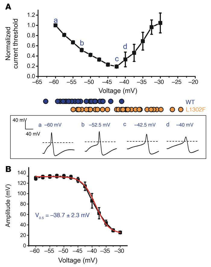 Depolarization of RMP causes biphasic changes in the current threshold a...