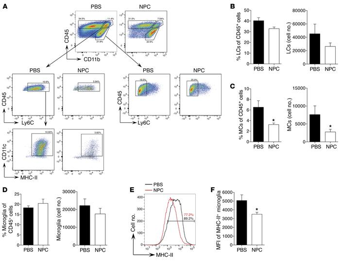 NPC transplantation reduces the accumulation of inflammatory MCs and the...