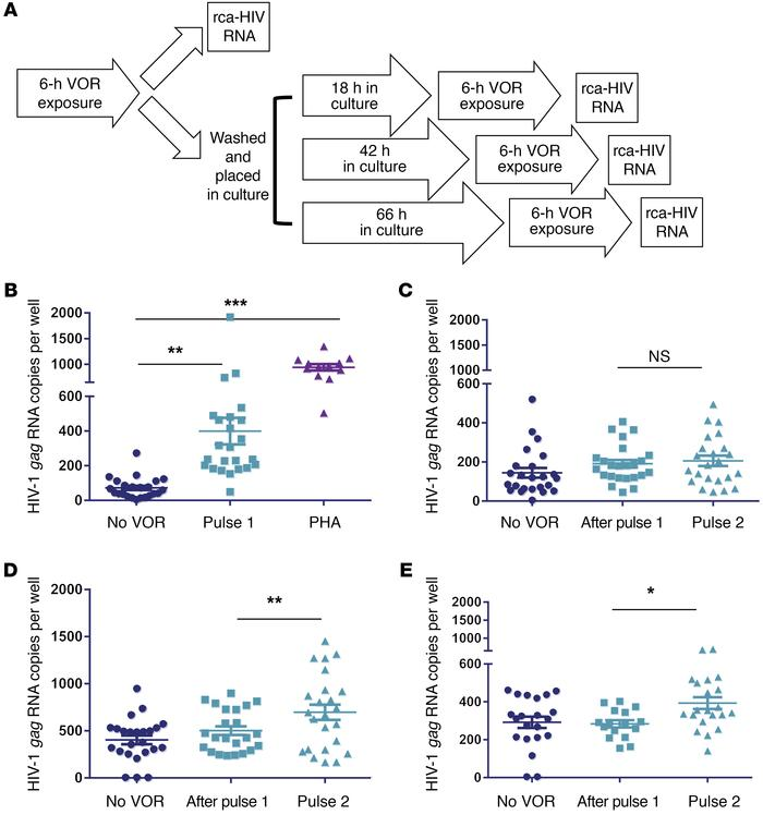 Jci Interval Dosing With The Hdac Inhibitor Vorinostat Effectively
