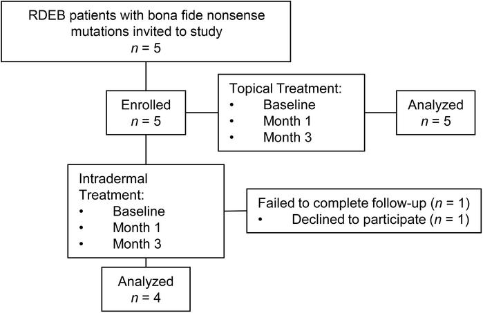 CONSORT flow diagram. Flowchart summarizing RDEB patient enrollment and ...
