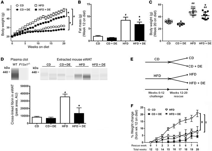 Treatment of mice with DE protects against the development of HFD-driven...