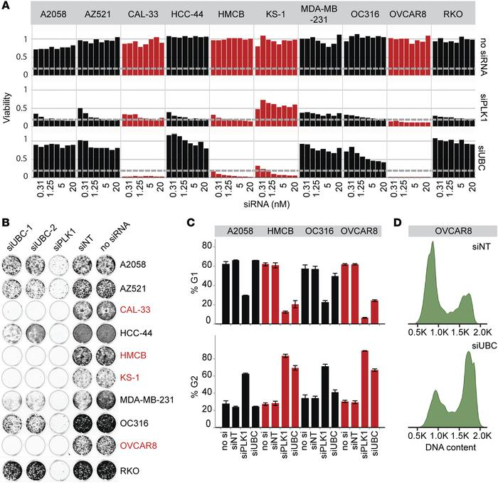 JCI - Recurrent ubiquitin B silencing in gynecological