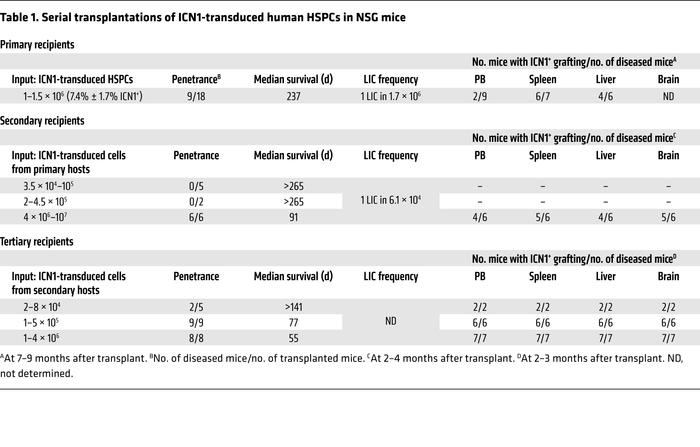 Serial transplantations of ICN1-transduced human HSPCs in NSG mice
