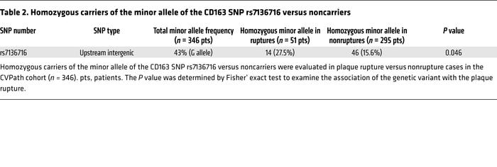 Homozygous carriers of the minor allele of the CD163 SNP rs7136716 versu...