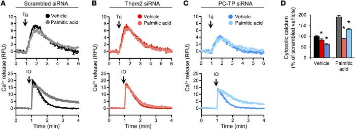 Them2 and PC-TP enable palmitic acid–induced calcium efflux from the ER....