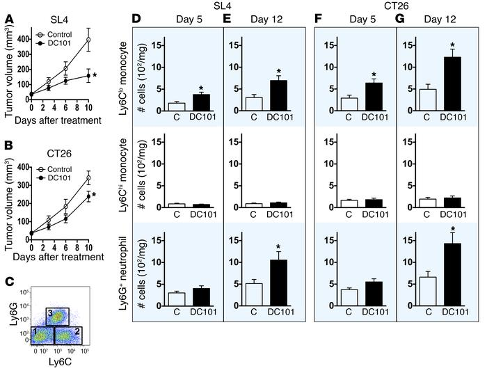 Anti-VEGFR2 therapy facilitates early infiltration of Ly6Clo monocytes i...