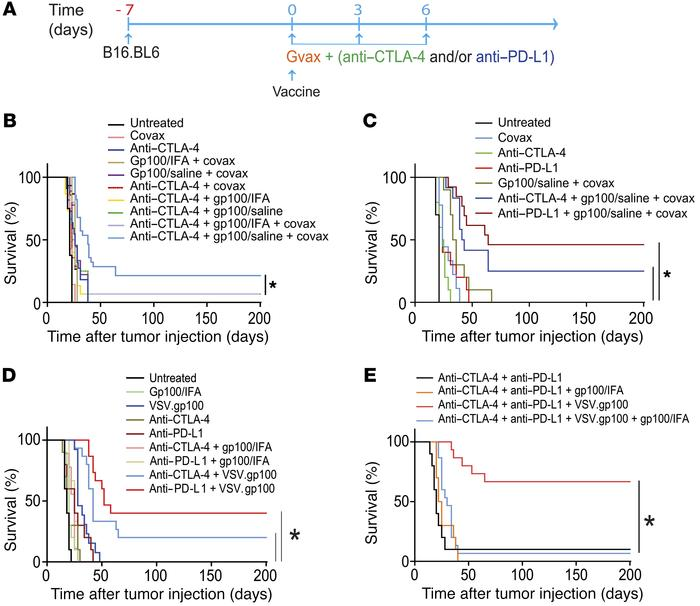Nonpersistent vaccine formulations overcome primary resistance to CTLA-4...