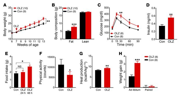 Olanzapine treatment profoundly alters energy homeostasis in female C57B...