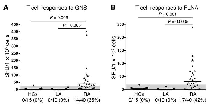 T cell reactivity to GNS and FLNA peptides in RA patients and comparison...