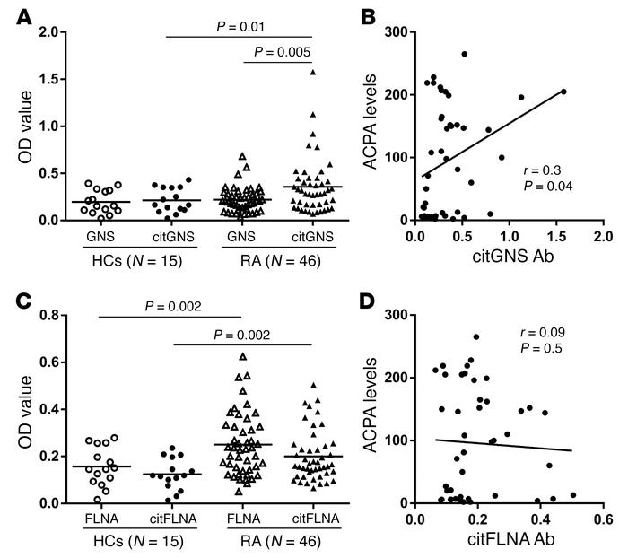 Autoantibody responses to citrullinated GNS and FLNA, and correlations w...