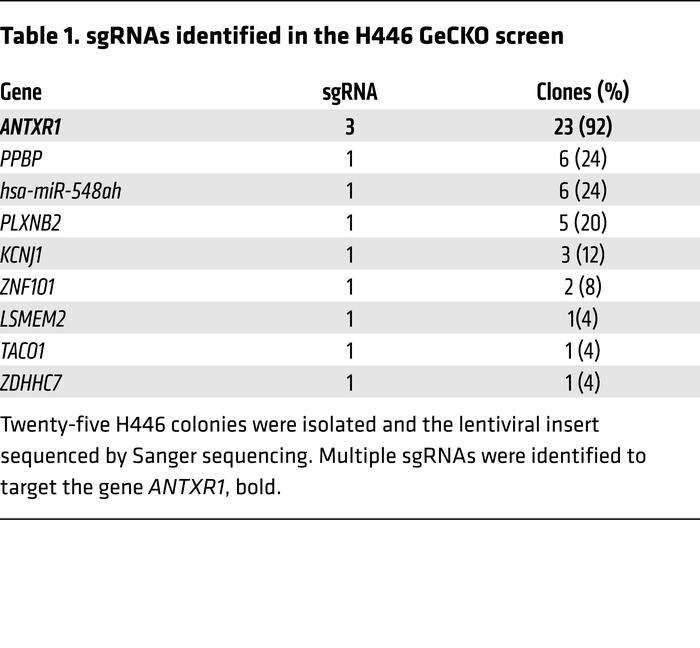 sgRNAs identified in the H446 GeCKO screen