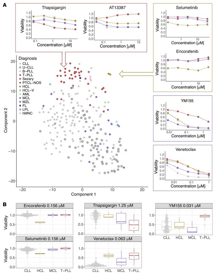 Disease-specific drug response phenotypes of blood cancers. (A) t-distri...