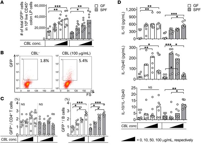 CBL stimulates IL-10–producing colonic LP B cells ex vivo. Unfractionate...