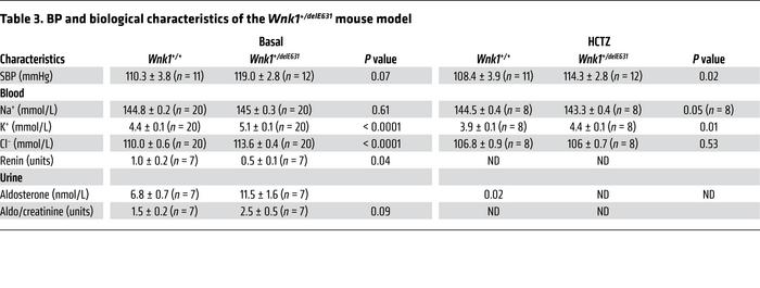 BP and biological characteristics of the Wnk1+/delE631 mouse model