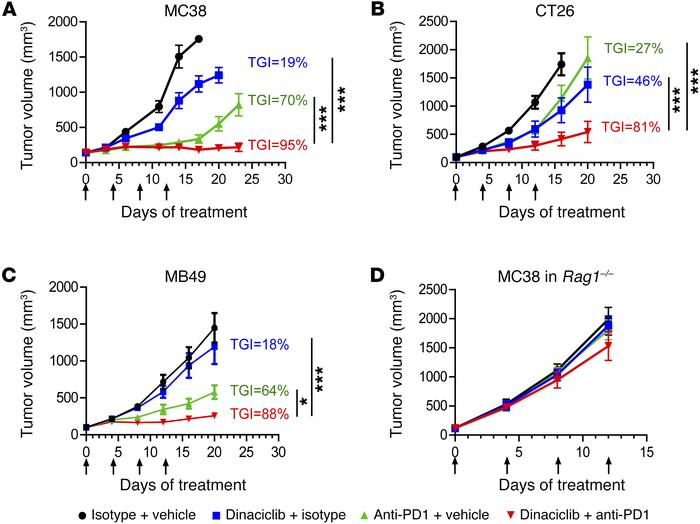 Dinaciclib and anti-PD1 combination therapy inhibits tumor growth in syn...
